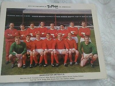 Manchester United RARE SERIES 1 TYPHOO TEA FOOTBALL CARD NR MINT CONDITION