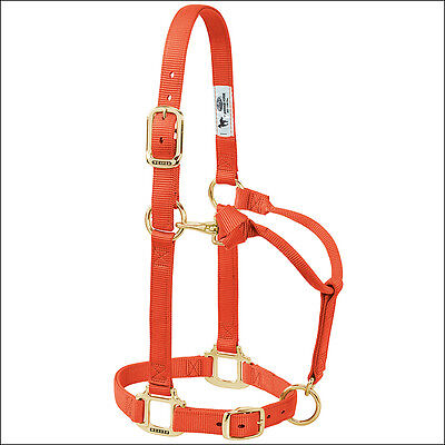 Weaver Orange Large Horse Nylon Heat Sealed Buckle Halter Adjustable Chin Throat