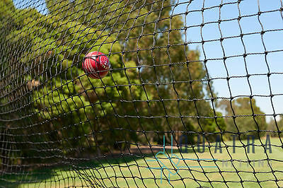 Black Cricket Net / Sports Barrier Netting  8m x 3.6m : Ball Stop net