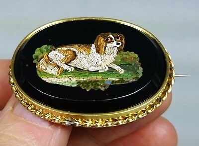 Victorian Antique Spaniel Dog Micro Mosaic Brooch Pin, Italy, Grand Tour, Italy
