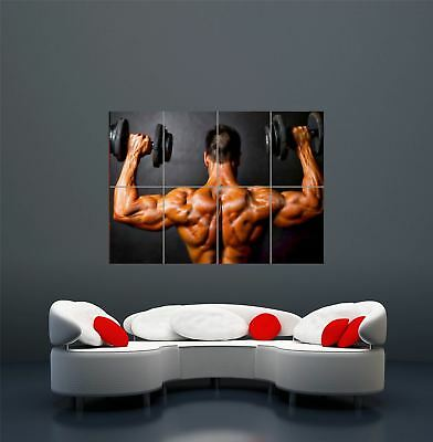 Bodybuilding Weight Lifting Gym Muscles Giant Art Poster Print  Wa459