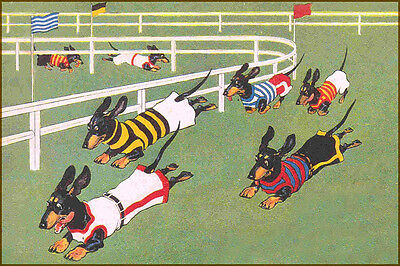 Dachshund Dog RACES cira. 1930s   -  LARGE New Blank Note Cards