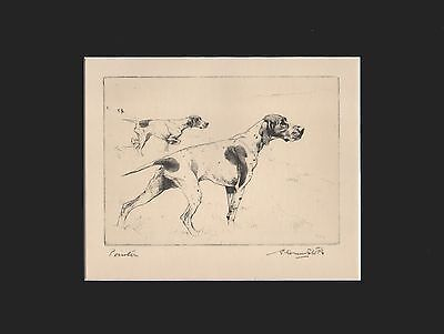 Pointer Dogs by Vernon Stokes 1930 Dry Point Matted 10X13 Print