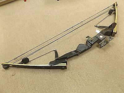 AMF Voit Wing Presentation Hunter Compound Bow