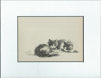 Vintage Cat Kitten Print 1946 by Lucy Dawson 8X10 WHITE MAT