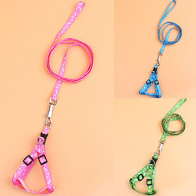 Pet Harness Small Dog Chest Strap Rope Cute Cat Puppy Paw Bone With Lead Leash