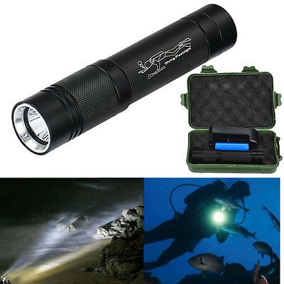 6000LM Underwater 100m CREE T6 LED Diving Flashlight Torch Scuba Waterproof