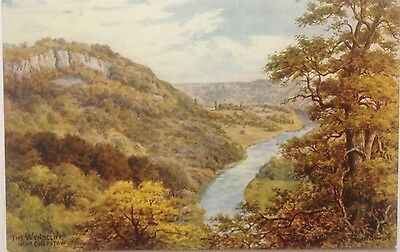 A. R.quinton, The Wyndcliff Near Chepstow.