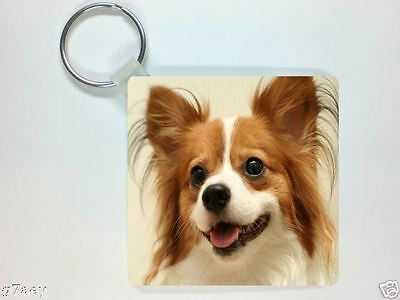 PAPILLON PICTURE KEYRING No 3, THE BUTTERFLY DOG