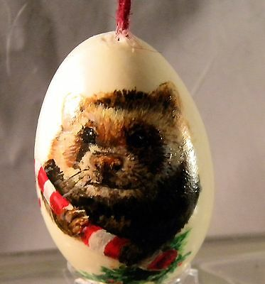 Beak-Street Handpainted Real Duck Egg FERRET / STOAT XMAS collectible in case