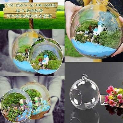 8cm Clear Hanging Glass Flowers Plant Vase Stand Holder Terrarium Container PB