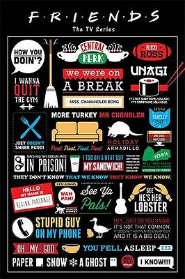 """FRIENDS laminated POSTER """"LICENSED"""" BRAND NEW """"INFOGRAPHIC"""" HOW YOU DOIN'? JOEY"""