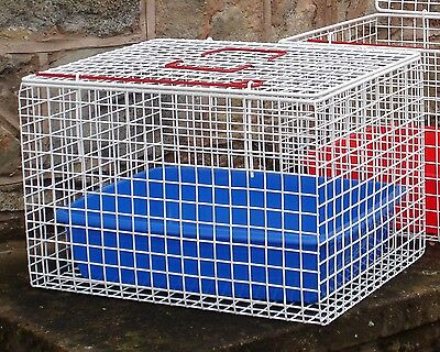 Pet Cat Carrier Wire Top Opening Rabbit Puppy Hygienic Manufacturing