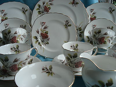 Lovely Royal Vale Vintage Bone China 21 Piece Tea Service