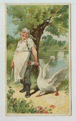 1800's Advertising Trade Card Lion Coffee The Swan and the Cook cv5924
