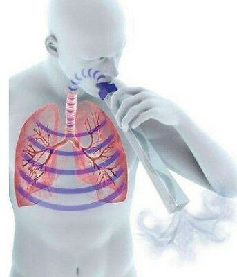 LungFlute, Secretion Mobilization Device includes 10 extra reeds