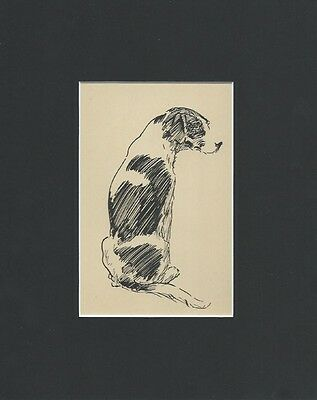 Vintage Pointer Dog 1932 Print by Print by Diana Thorne Matted 8 x 10