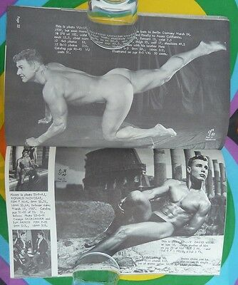 Gay Interest Male Nude Photo Beefcake Physique Pictorial Vol 16 No 1 1966