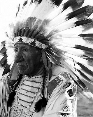 Native American Indian CHIEF RED CLOUD Glossy 8x10 Photo Lakota Sioux Print