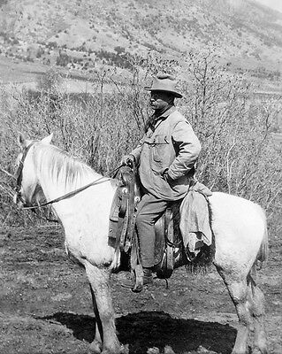 1910 President THEODORE 'TEDDY' ROOSEVELT Glossy 8x10 Photo Badlands Print