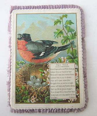 Victorian Padded Frilled Fancy New Year Compliments Season Birds Flowers Card