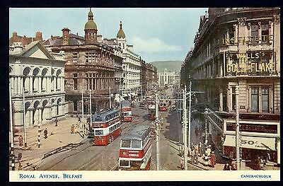 BELFAST: Royal Avenue ~ Vintage postcard ~ Unposted
