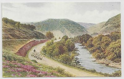 "Salmon ""Water Colour"" Postcard – Rhayader on the Wye"