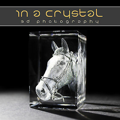 3D Crystal Photo               Free Text Engraving !!