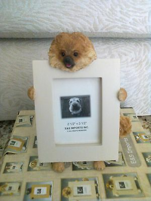 Pomeranian Small Picture Frame CLEARANCE SALE