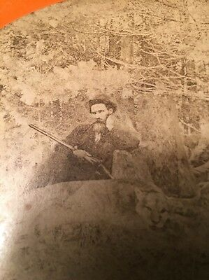 Rare Stereoview Record Panther Barnard VT. 1881 By Alex Crowell FREE SHIPPING