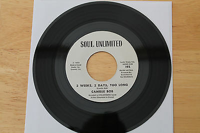 Camille Bob Brother Brown/2 Weeks, 2 Days...FUNK 45 SOUL UNLIMITED