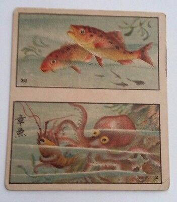 BAT (Teal) Fish Series Large 1916 (Issued in Siam) Cigarette Cards # 30