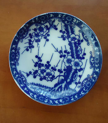 Blue and White Porcelain Dish * Prunus Root Pattern * Chinese ? Worcester ?