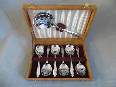 Lovely Boxed Vintage Set of 6 Fruit Spoons and Serving spoon - Chrome Plated