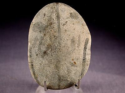 Authentic Artifact Lower Pecos Painted Pebble With Coa – Texas - Early Art!!!!!