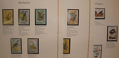 BIRDS - Barbados- 1979-82 set of 14 on three pages -MNH