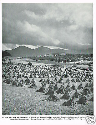 The Mourne Mountains Vintage 1950s Print #393025
