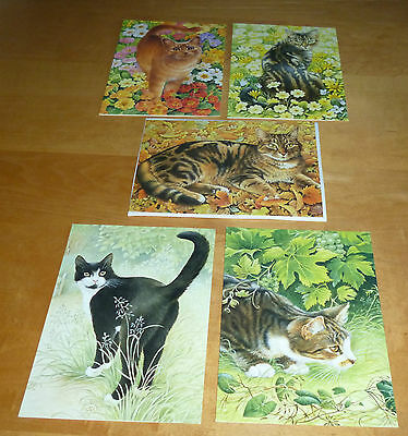 5 Assorted Lesley Anne Ivory Cats Country Cats Loose Blank Cards With Envelopes