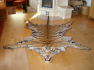 taxidermy tiger with mounted head