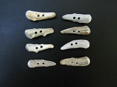 """Antler Buttons,1  1/2""""toggles,brow Tines,8 Nice Bumpy Pieces,112-11"""