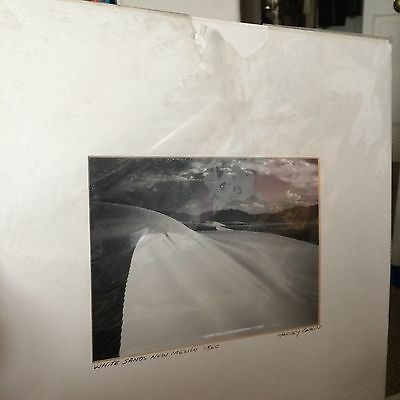 Harvey Caplin Photo New Mexico Great White Sands 1960 Matted