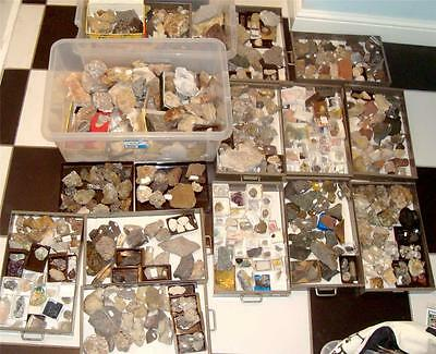 Huge Collection Rock Mineral Fossil Specimens Geology Geography Ideal Reference