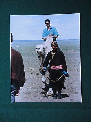 Antique Press Photo Princess Anne Husband Riding a Camel in Mongolia