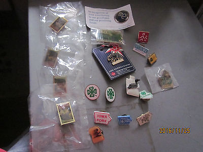 lot of 22 assorted pins 4-H, Iowa, Canada, Stamp, loon