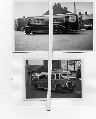 Bus Photos B&W - Wilts & Dorset Salisbury Leyland TS8