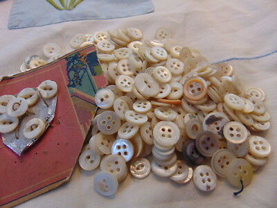 Lot of Small and Diminutive Mother of Pearl Buttons