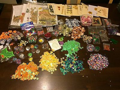 Mixed Bundle Of Craft Items Sequins Beads Flowers Real Pressed Flowers