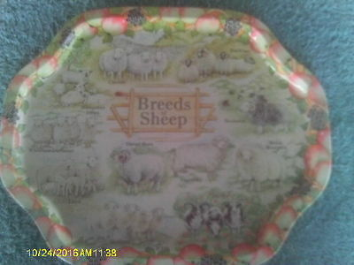 "13"" x 11"" Metal Tral Featuring 11 Breeds of Sheep"