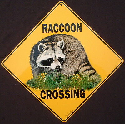 RACCOON  CROSSING Sign aluminum art wildlife decor painting picture signs home