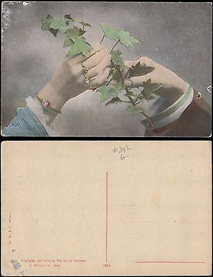 ivy branch held by woman and man hands, unused